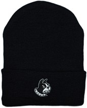 Wofford Terriers Newborn Baby Knit Cap