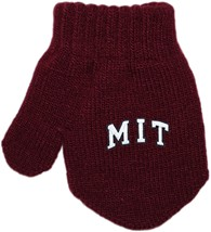MIT Engineers Arched M.I.T. Acrylic/Spandex Mitten